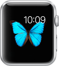 Apple Watch дисплей